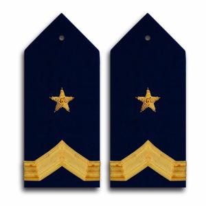Palas Dorada Fuerza Aérea