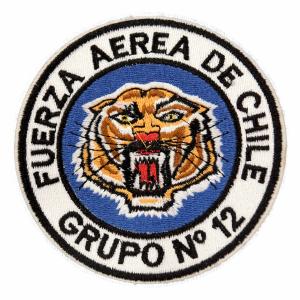 Grupo de Aviación N° 12