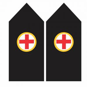Palas de Enfermero – Armada de Chile
