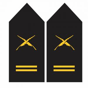 Palas de Escribiente – Armada de Chile