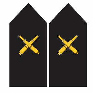Palas de Artillero – Armada de Chile