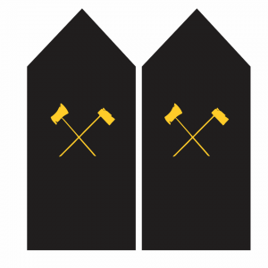 Palas de Carpintero – Armada de Chile